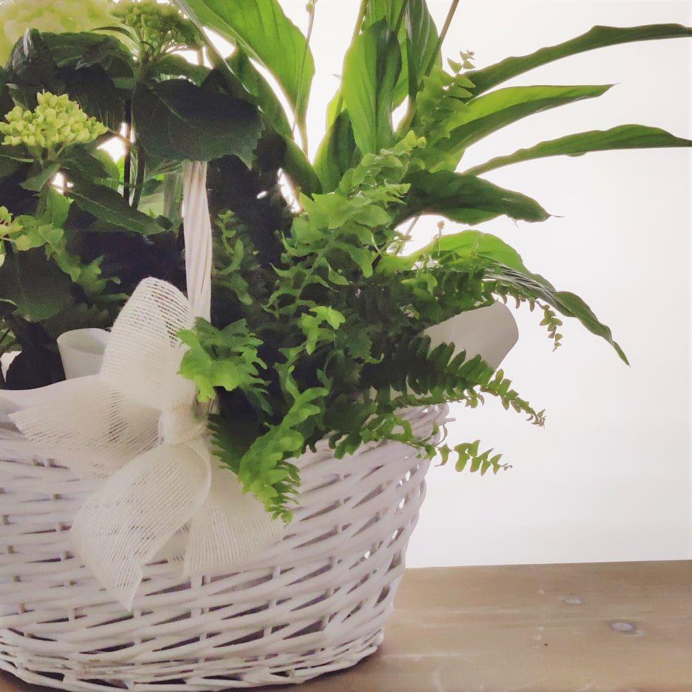 cesta variada blanca